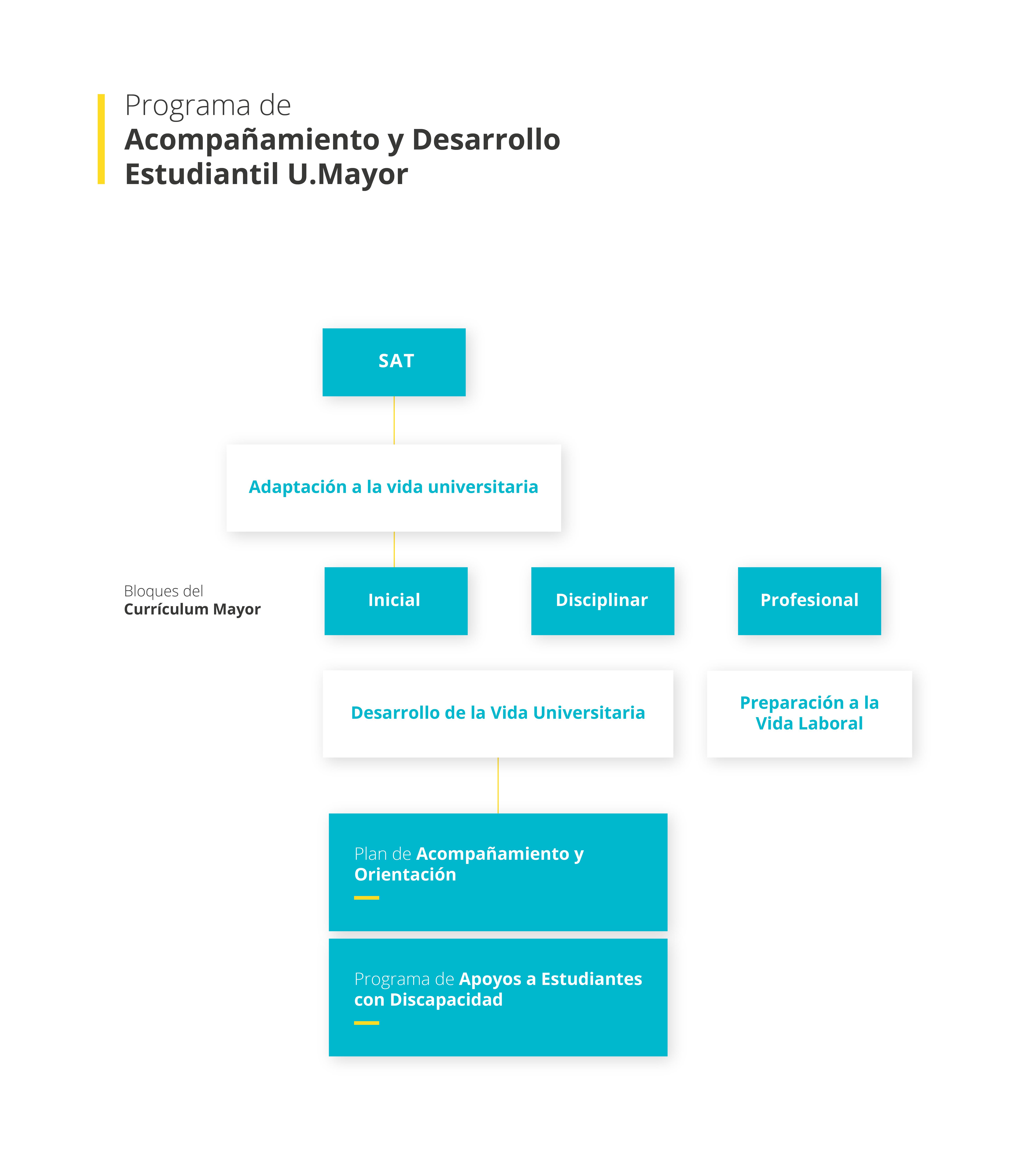 Diagrama-UMAYOR_Mesa-de-trabajo-1